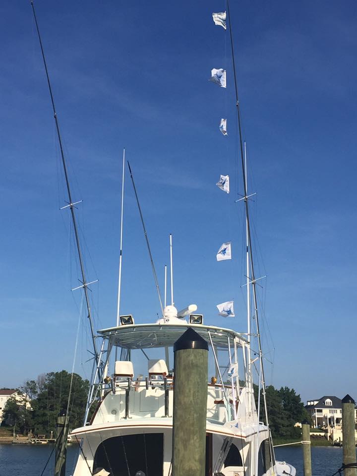 Virginia Beach, VA - (VBBTB) A Salt Weapon released 8 Sailfish.