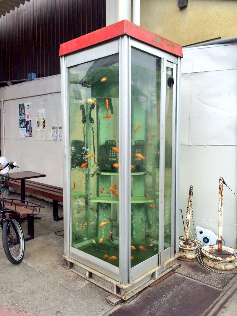奈良の郡山、電話ボックスや自動販売機、カフェテーブルにまで金魚が泳いでてすごい街だった! pic.twitter.com/VDLWMxHeZp