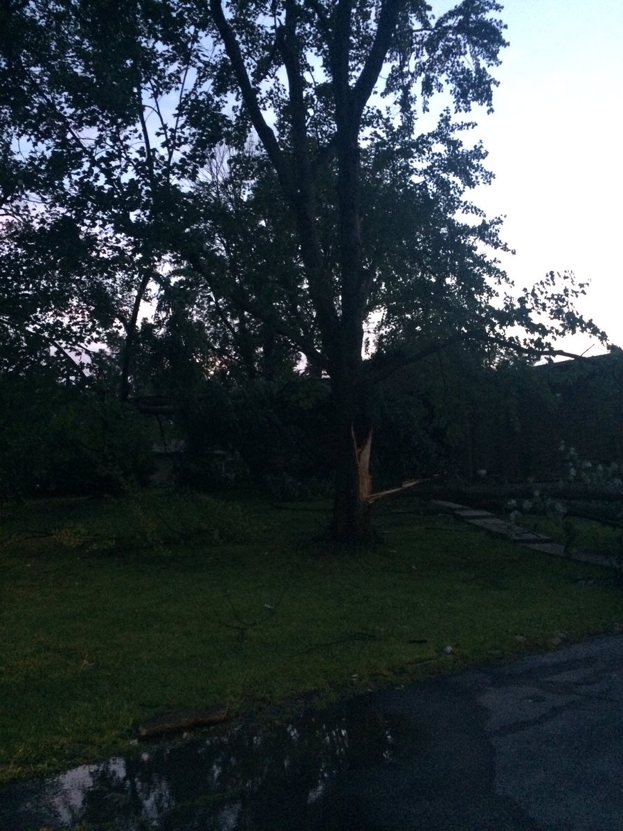 Downed trees + flooding = lots of cleanup around Indy today. We'll have more on the damage on Daybreak8