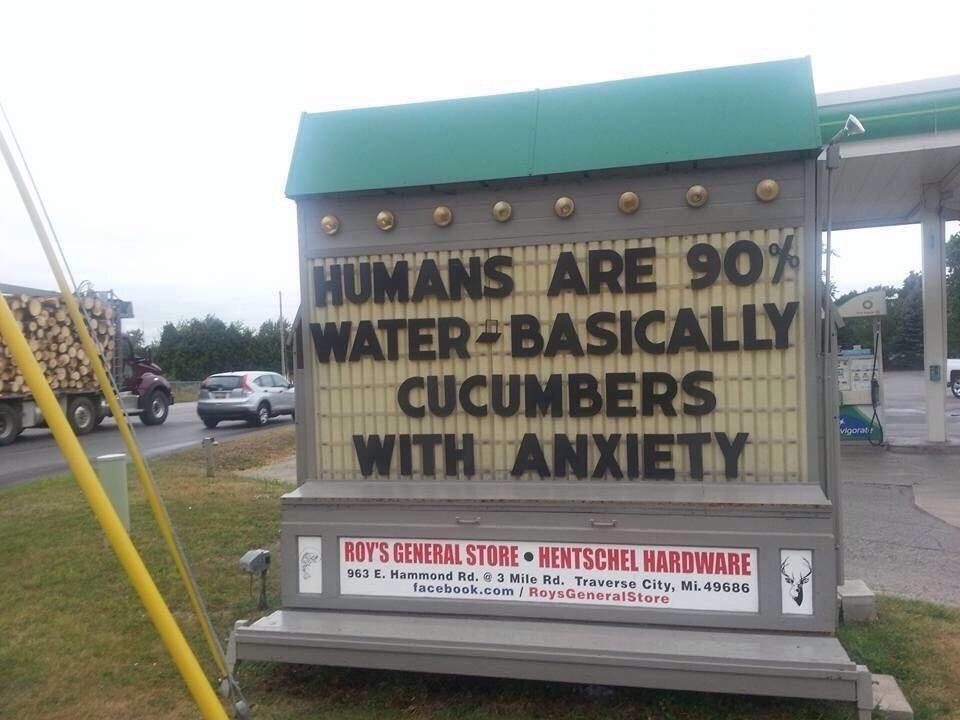 Quote of the day: humans are 90% water, basically cucumbers with anxiety https://t.co/ErcgbSVKhx