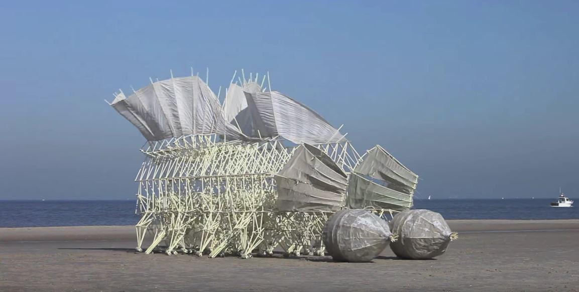 """Картинки по запросу """"Современный да Винчи"""" создает невероятных """"пляжных животных"""""""