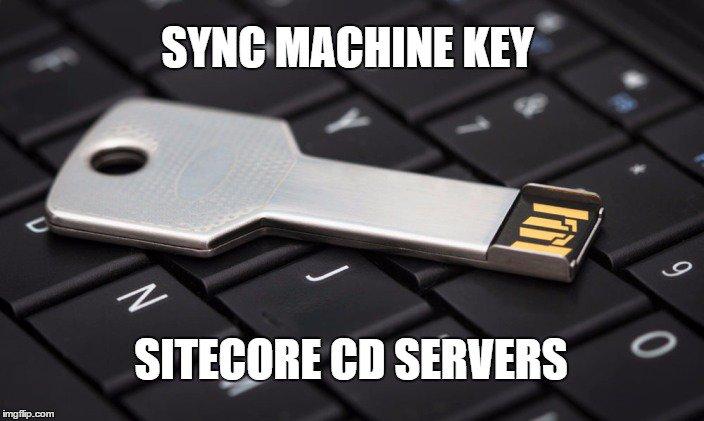 cd key windows server 2003 standard edition
