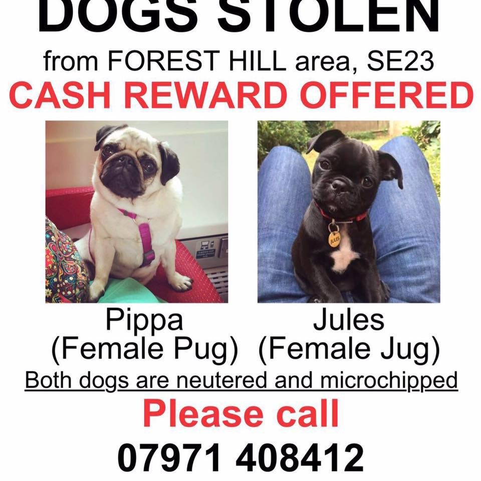 RT @PippaandJules: Our hearts are breaking, we've been searching & flyering all day, but still no news. #findpipsandjules #pug #se23 https:…