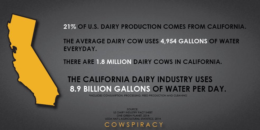 Soooo crazy! If we reduced or eliminated our animal meat consumption