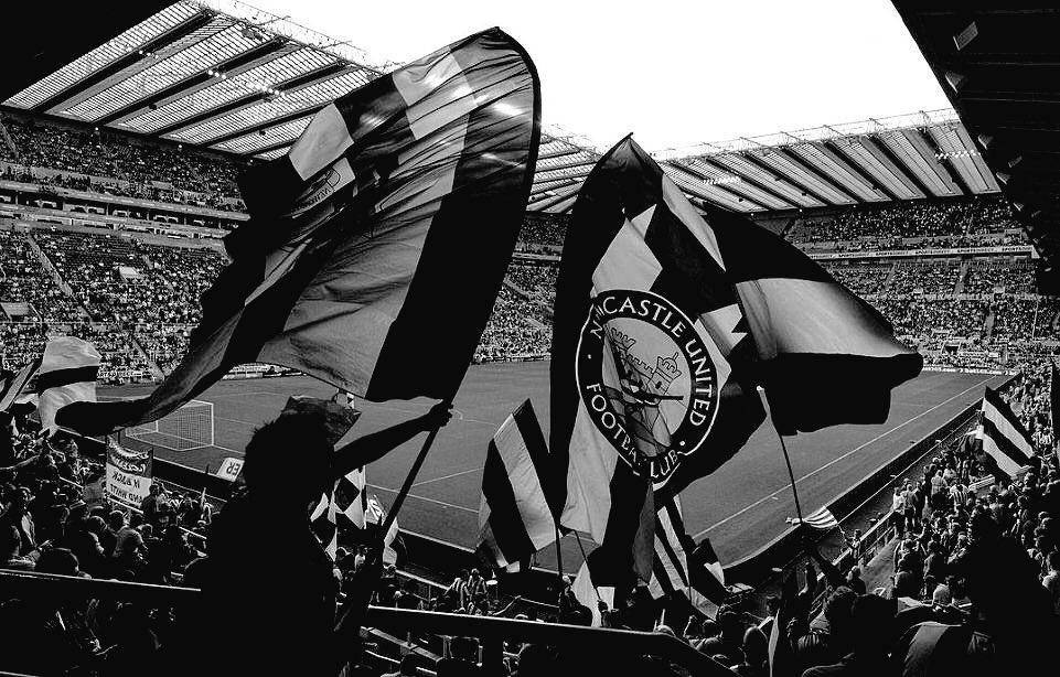 Slike - FC Newcastle - Page 14 Cq5P8-aWcAAO_v4