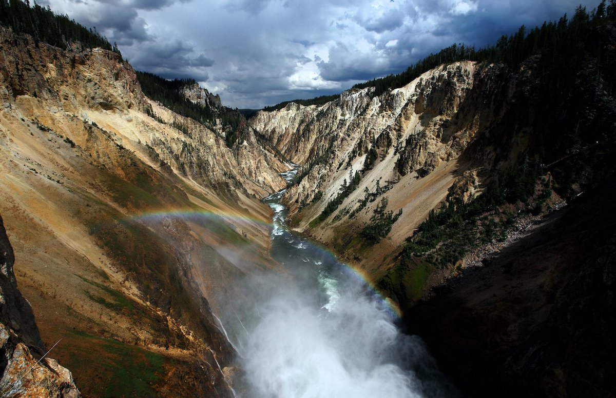 Park worker falls to her death in Yellowstone canyon while socializing with co-workers