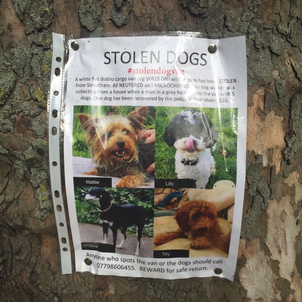 Please help - dogs stolen on Clapham Common - do you know anything? https://t.co/JbAexHRu9w