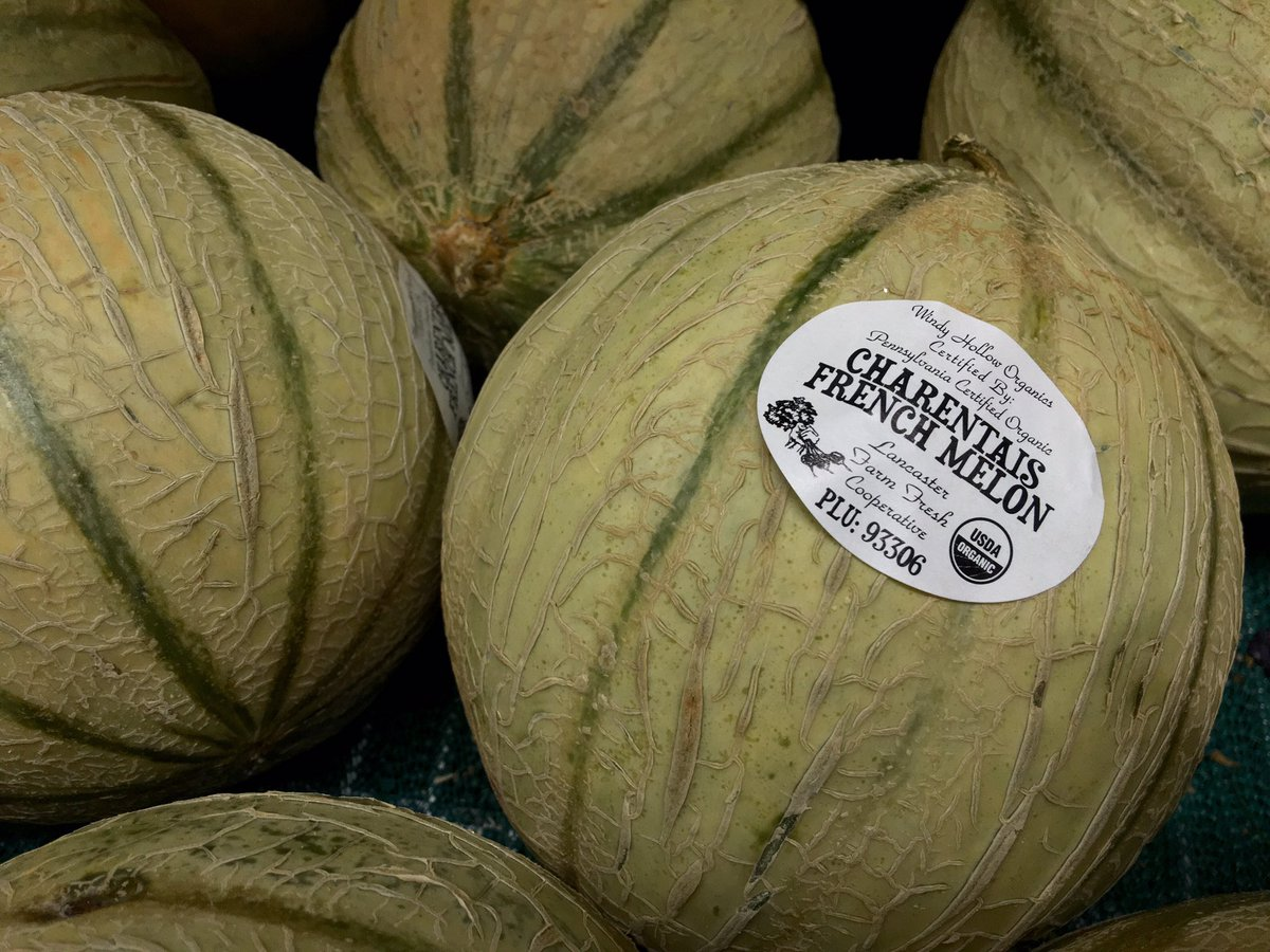 Parkslopefoodcoop On Twitter Charentais Melon Cantaloupe Ish Lffcoop Today S Produce List Https T Co Rawthvia0z But our 50 recipes show there are many other ways to enjoy cantaloupe. charentais melon cantaloupe ish