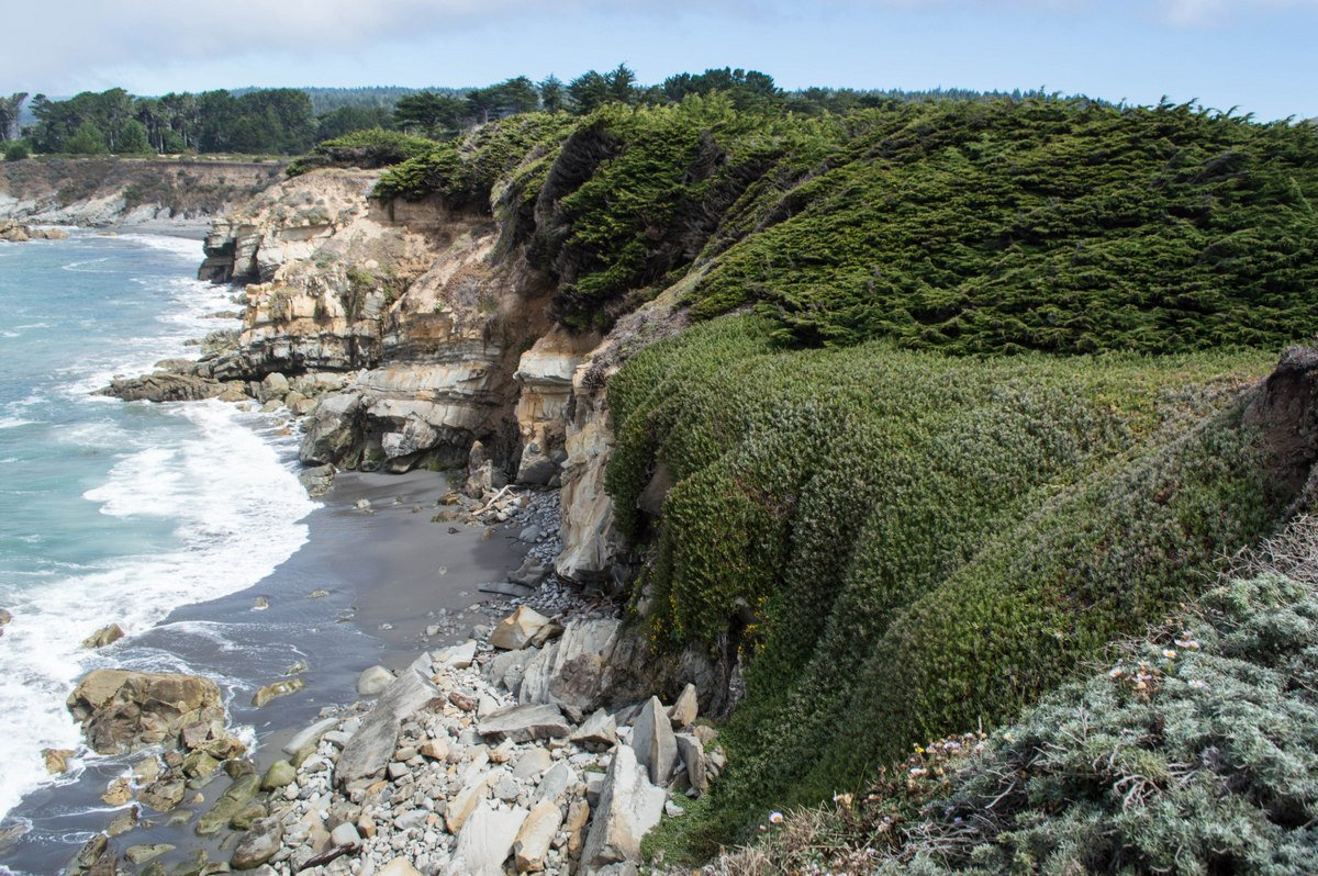 Scenes from the Sea Ranch, a Peaceful Getaway on the California Coast https://t.co/iPIx2wF3na #familytravel #norcal https://t.co/OUOSCD6wYW