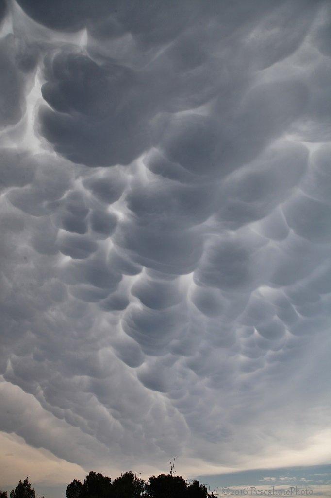 Imposant le ciel au-dessus de la #Camargue en ce moment ! Et le tonnerre qui gronde .... https://t.co/7sEZHQlHts
