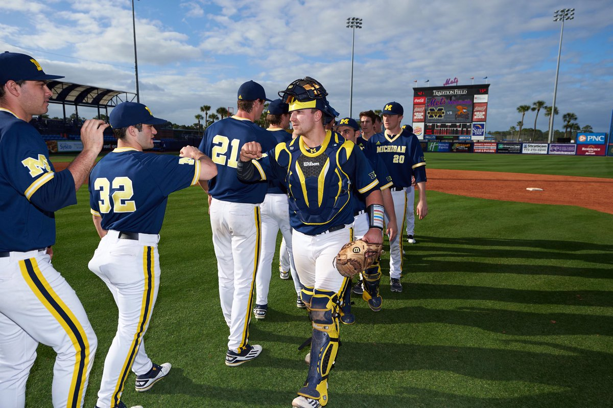 michigan baseball - photo #40