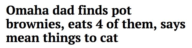 Roses are red Sunflowers are flat https://t.co/UwYv7pjCps