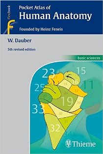 book Supporting Mathematical Development in the