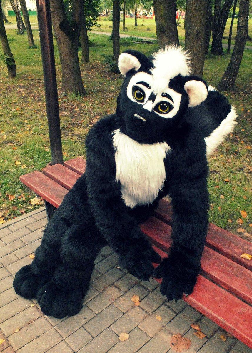 Elli Fox On Twitter Cute Skunk Boy Sammy By Furrystudio L