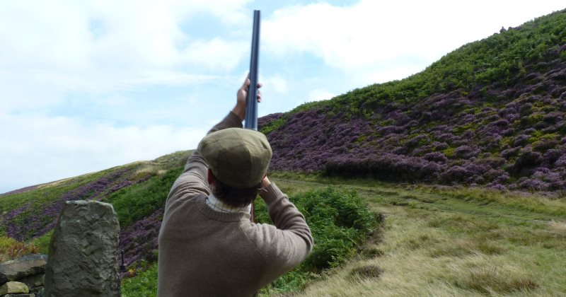Time to close down Britain's devastating grouse-shooting industry! #ecology The Ecologist https://t.co/Hrn03hpoWR https://t.co/HQF9TgmC3P