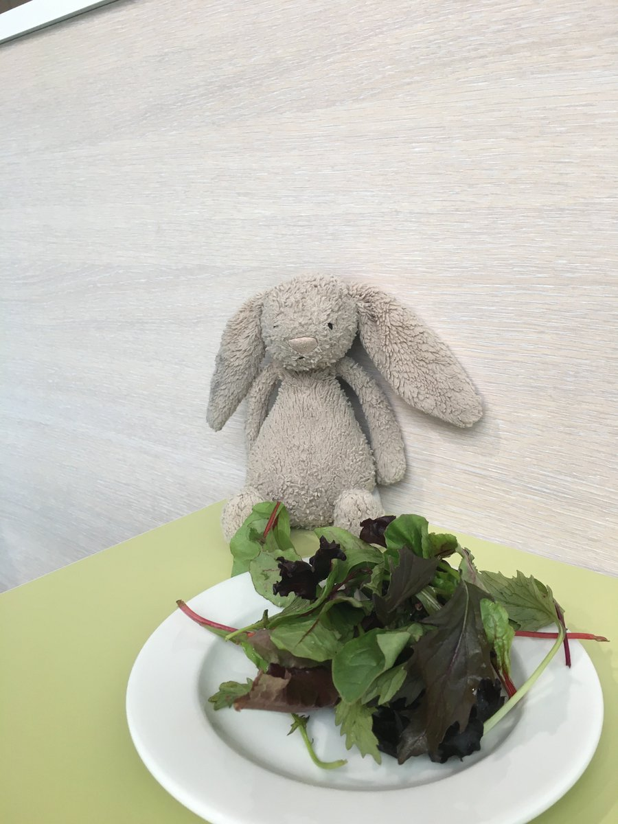 Have u lost bunny? Get in touch if ur little one is missing him! He's being well looked after till u get here. https://t.co/BA79KVYXkU
