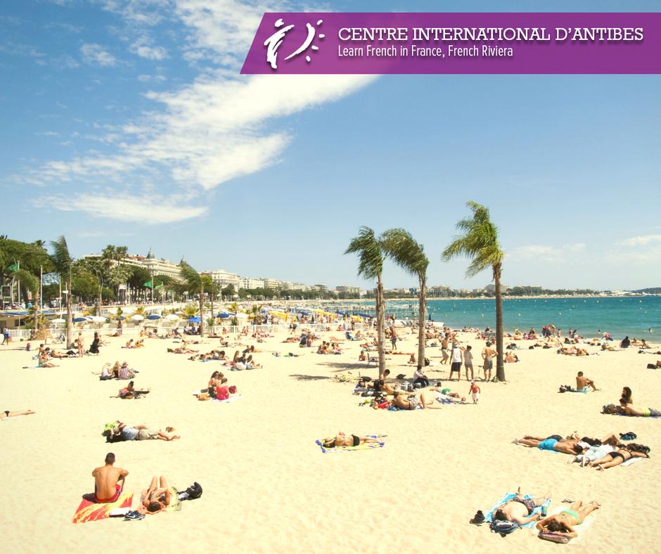 Elle n'est pas belle notre région? Plage à Cannes #cotedazurnow #cotedazur #cannesplage #centreinternationaldantibes