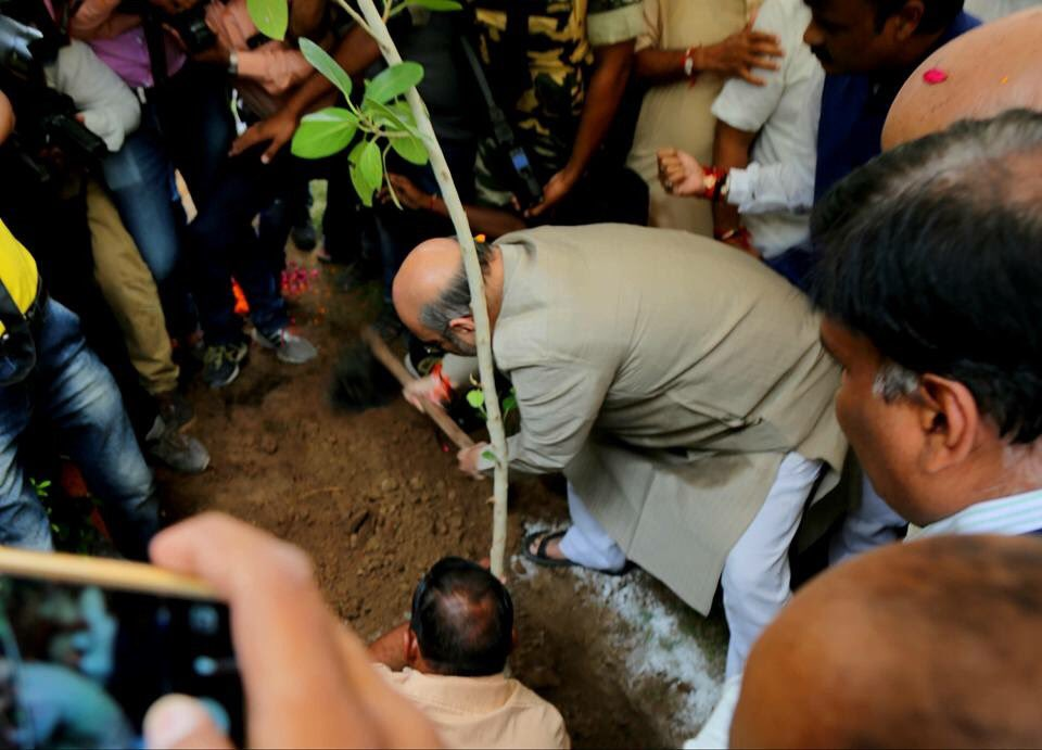 Amit Shah plants tree, addresses citizens of his Naranpura assembly constituency