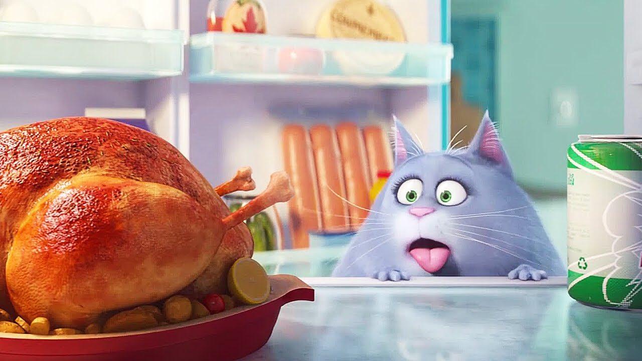 Смешные картинки про еду и диету хорошем качестве, днем