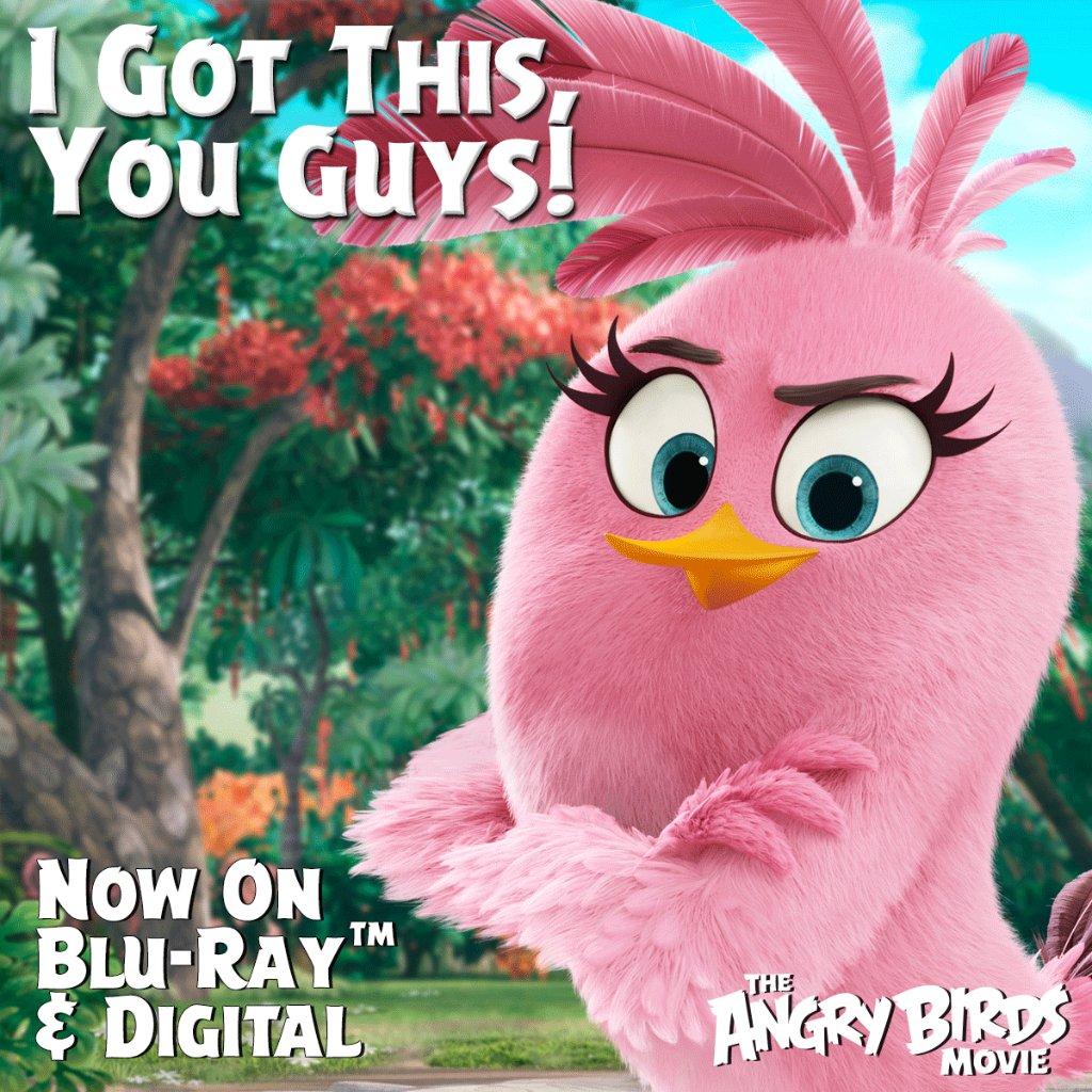 Angry Birds Movie (@AngryBirdMovie) | Twitter