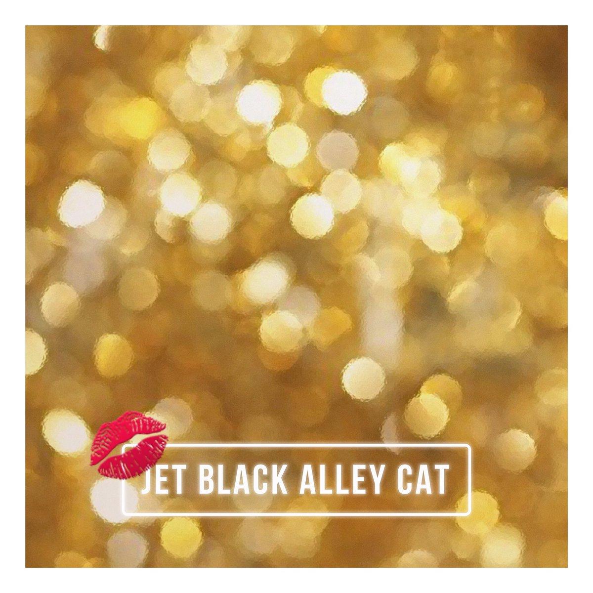 Jet Black Alley Cat Golden