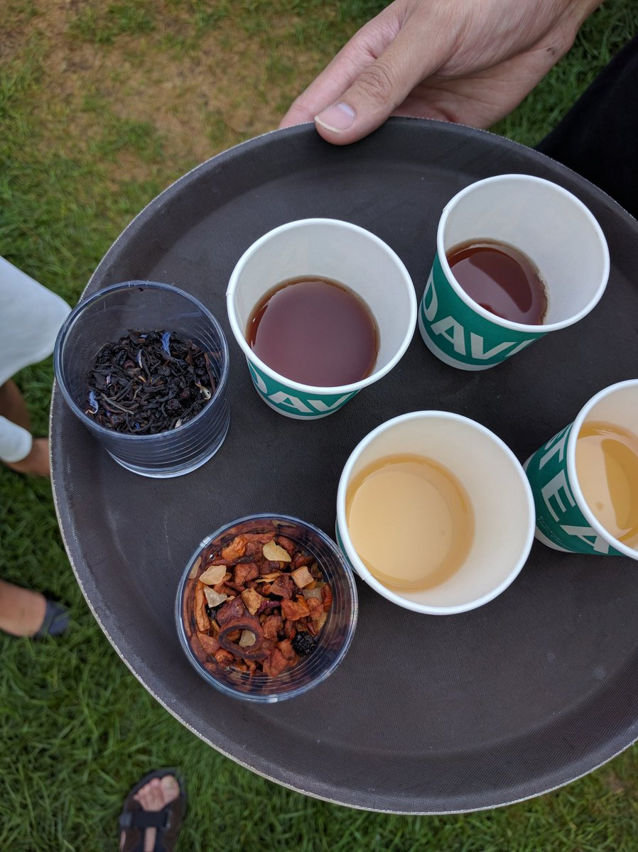Sweetery Toronto Food Festival 2016 David's Tea