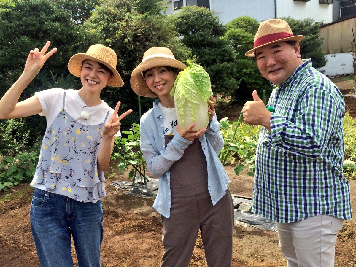 """川瀬 良子 Twitter પર: """"Eテレ『趣味の園芸 やさいの時間』収録 ..."""