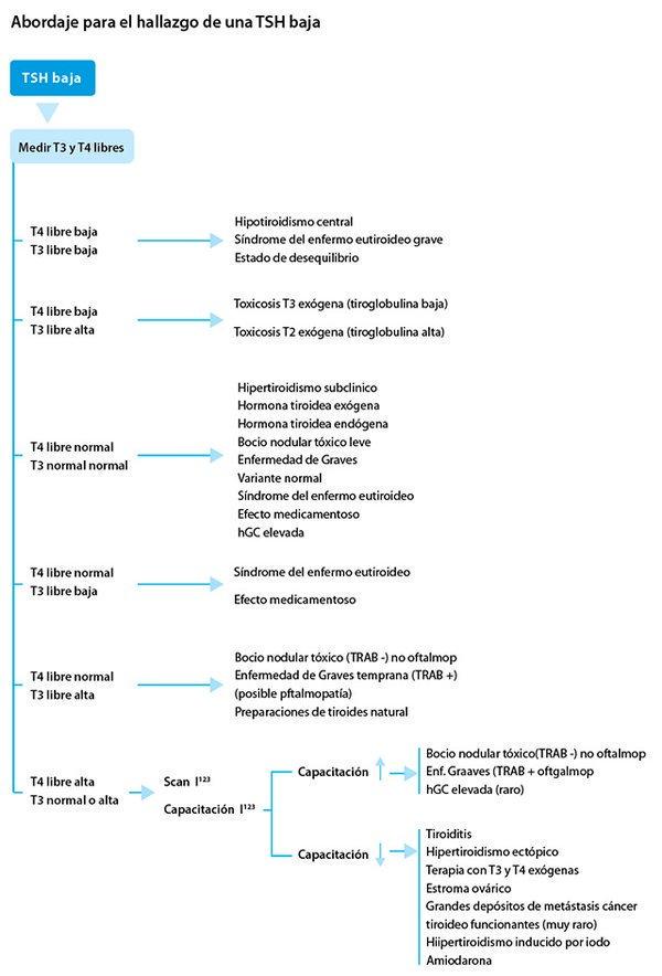 dieta para personas con hipotiroidismo subclinicos
