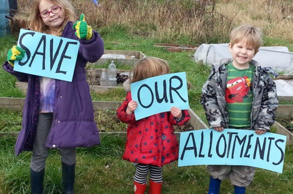 COURT ACTION BEGINS TO SAVE FARM TERRACE ALLOTMENTS