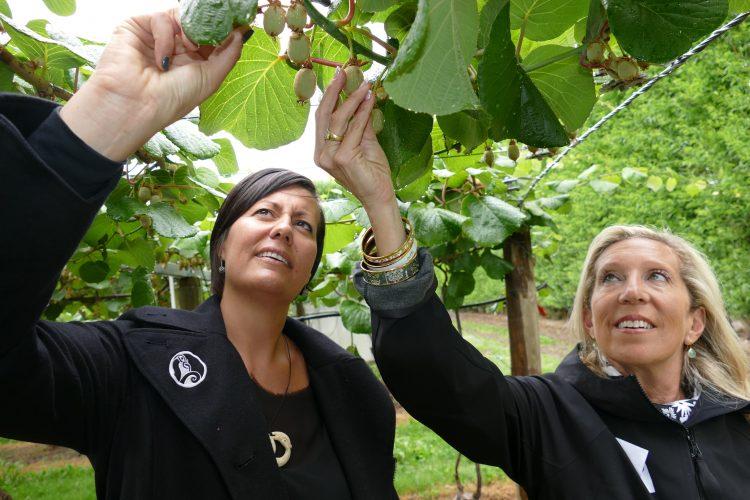 Nancy Gilbert profiles #WahineToa Kono NZ CEO, entrepreneur and advocate @RachelTaulelei: https://t.co/j2f560kzW3 https://t.co/i919oRzDGm