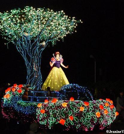 Disney Tours
