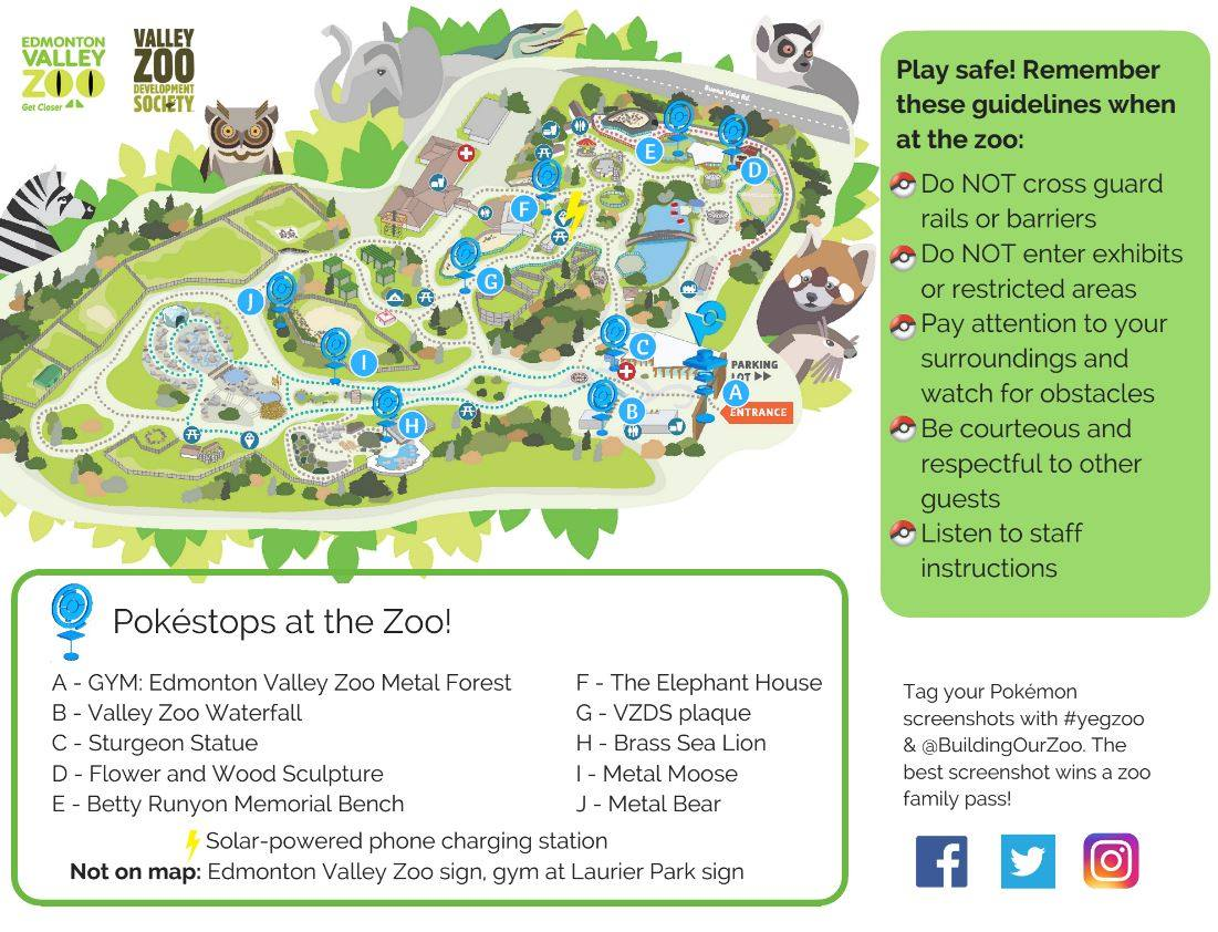 Valley Zoo Development Society on Twitter Our PokemonGo Safari is