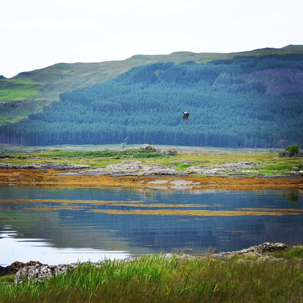 "julie liver-carlesi on twitter: ""lovely sceneries. we never forget"
