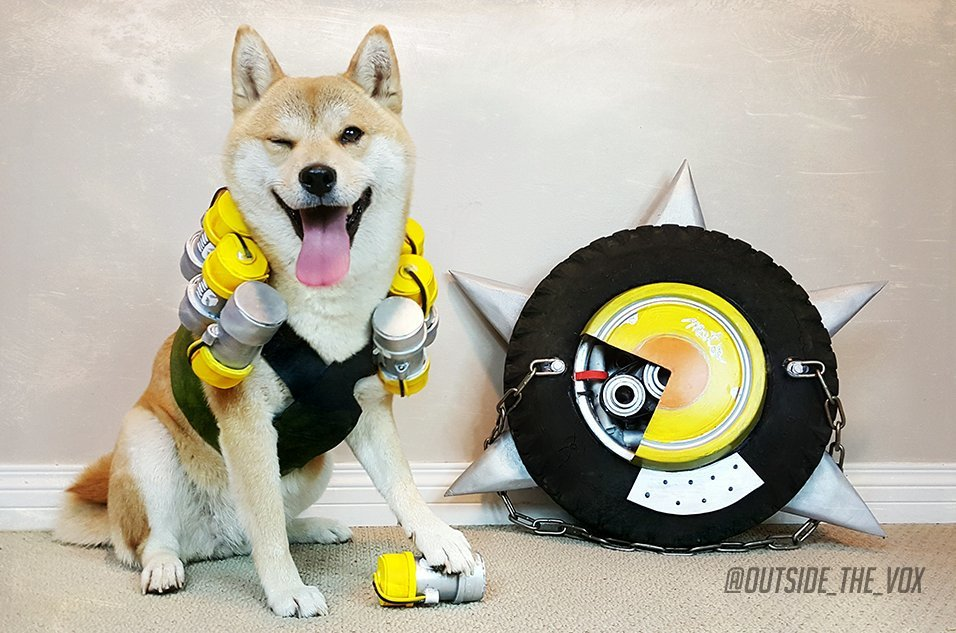 The #Overwatch dog #cosplay you never knew you needed. Via @Outside_the_Vox https://t.co/eHSr5ZHJDB