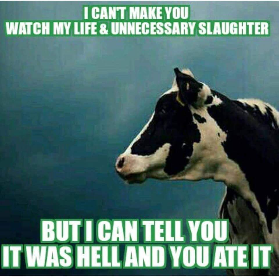 I can't make you watch slaughterhouse footage... but I can tell you it was hell and you ate it. #truth #govegan https://t.co/3BFGMDqhVz