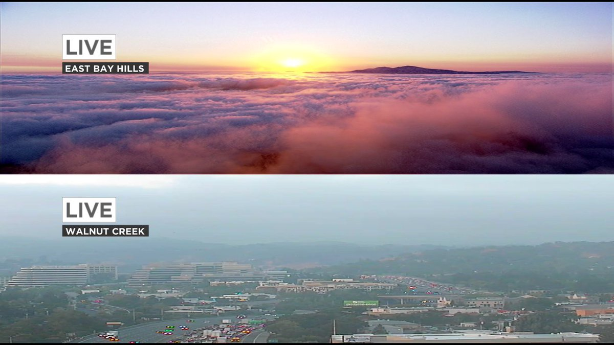 Above & below this morning's marine layer cloud deck. Pink to gray... abc7now