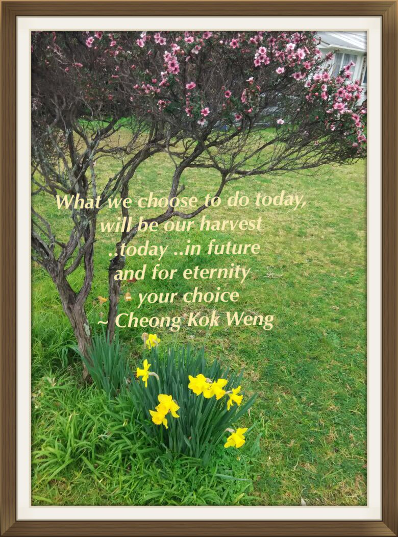 What we choose to do today will be our harvest ..today .. & for eternity. ~Cheong Kok Weng https://t.co/xk23v32D1q https://t.co/HWlvtCEeg8