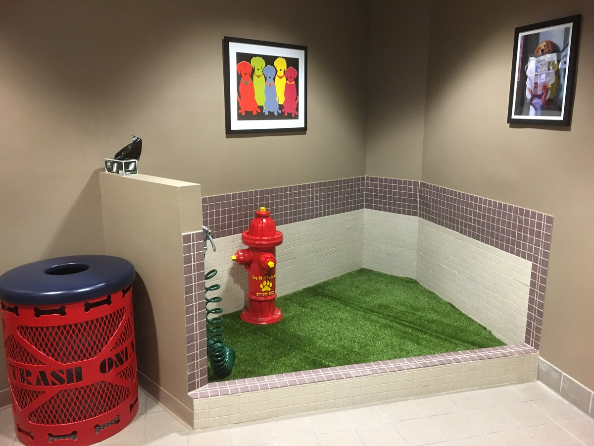 Check out the new pet relief area at the El Paso International Airport. @flyelp