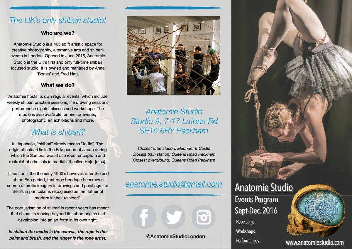 Anatomie Studio on Twitter: \