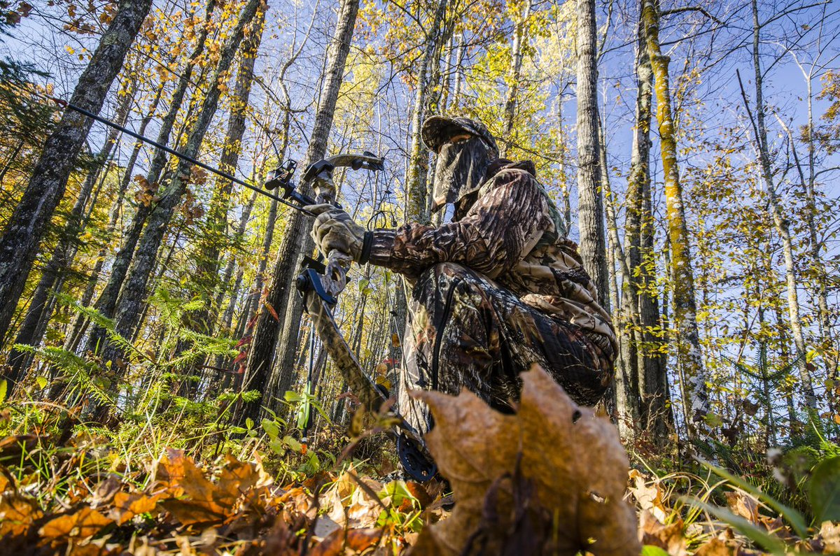 Get ready for your first bow hunt on the @RedsGear96 blog! https://t.co/9GG2skWXa7 https://t.co/5mq5lKUpMv