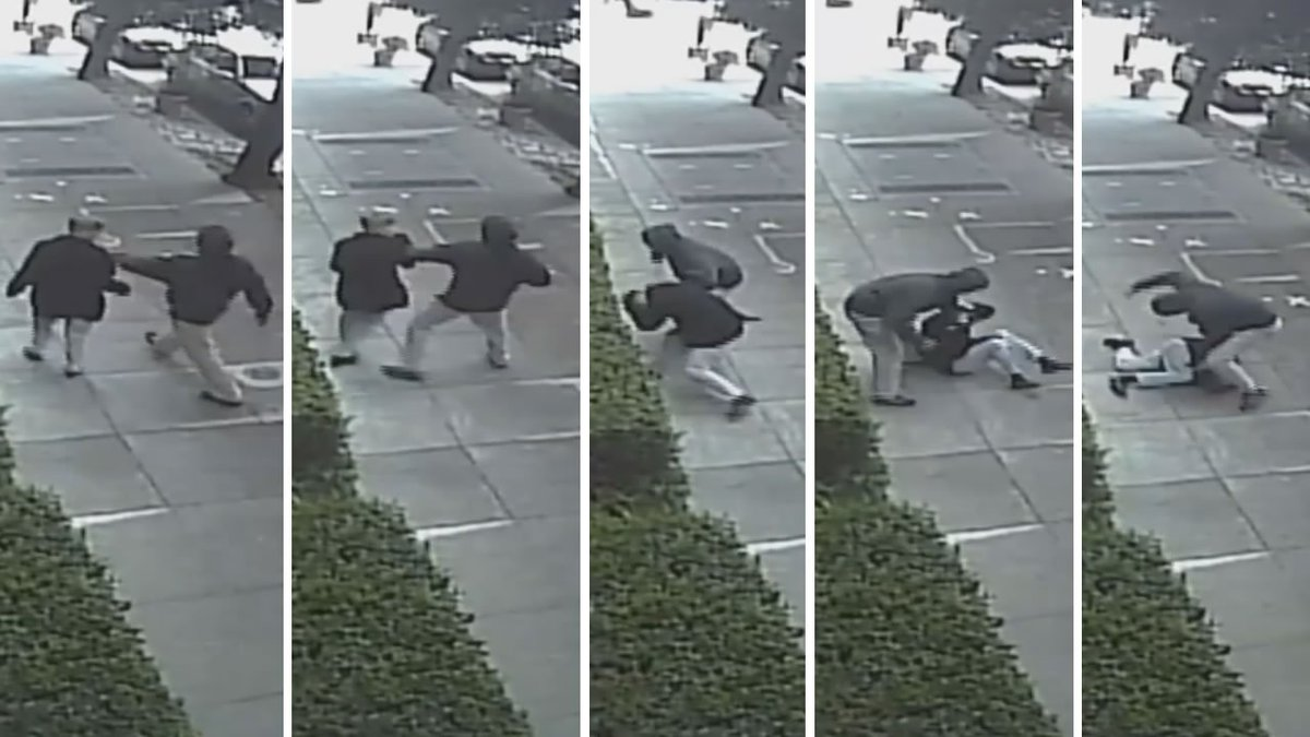 A walk in a SanFrancisco park took a terrifying turn when a woman was suddenly attacked.