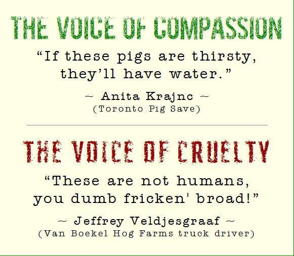 Voice of compassion vs Voice of crueltyWe should B better than this Stand with Anita @TorontoPigSave #farm365 #vegan https://t.co/e00ywM04z7