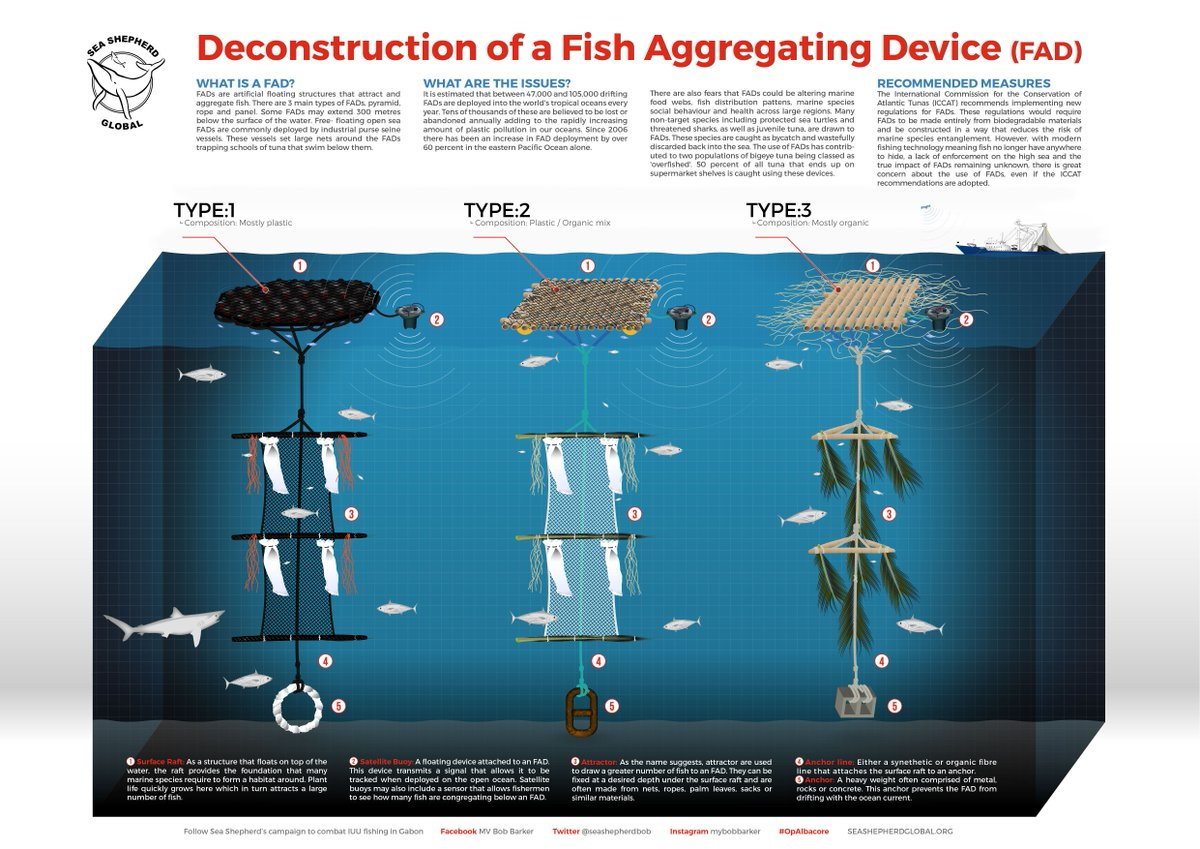 Sea shepherd on twitter campaignfacts you can 39 t tuna for Fish aggregating device