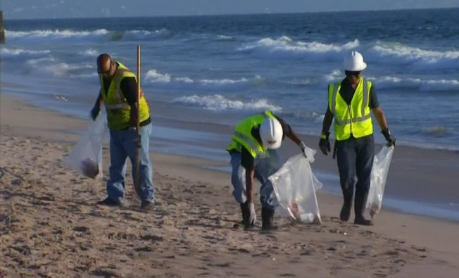 State asks for volunteers to cleanup thousands of cigarette butts, more trash from beaches