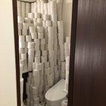 ヒカキンのトイレの中がヤバすぎる...これは流石にキチガイでしょ!