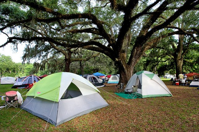 City Of Jacksonville Coj On Twitter Tbt Losco Regional Park Was A Beautiful Location For The Great Jax Campout In 2010 Findyourpark Nps100 Ilovejax