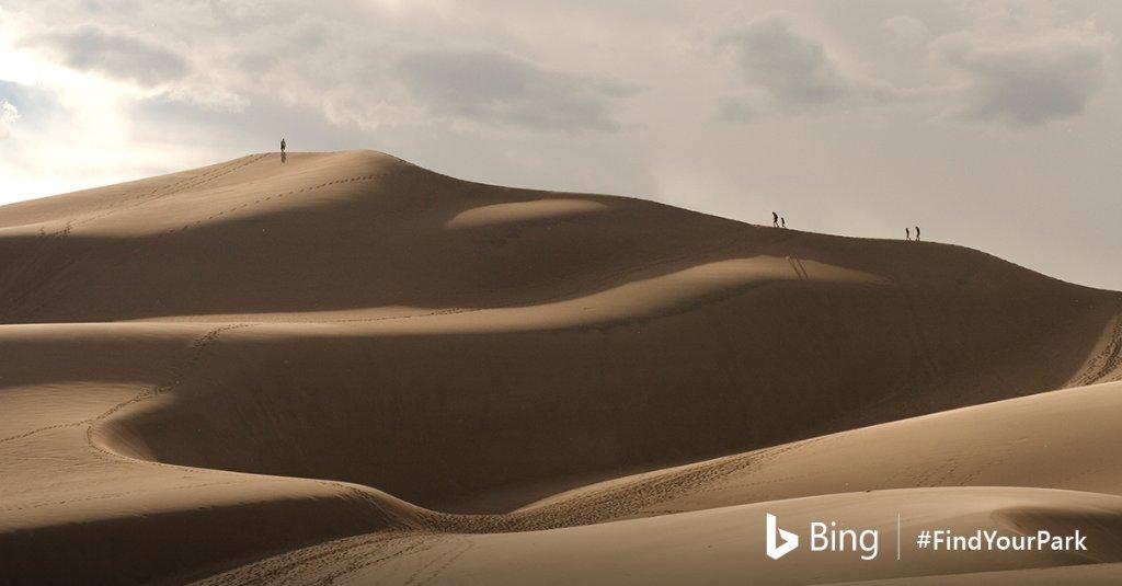 Bing (@bing)