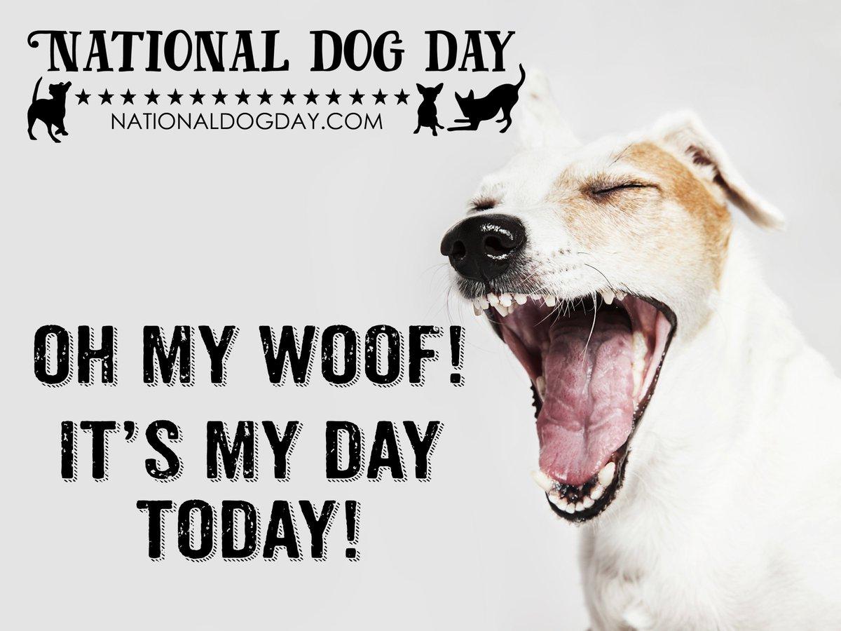 Already trending #2 WORLDWIDE at 2:13am PST. Now THAT is LOVE! <3 #NationalDogDay #HappyNationalDogDay #DogDay https://t.co/SamrZWq28c