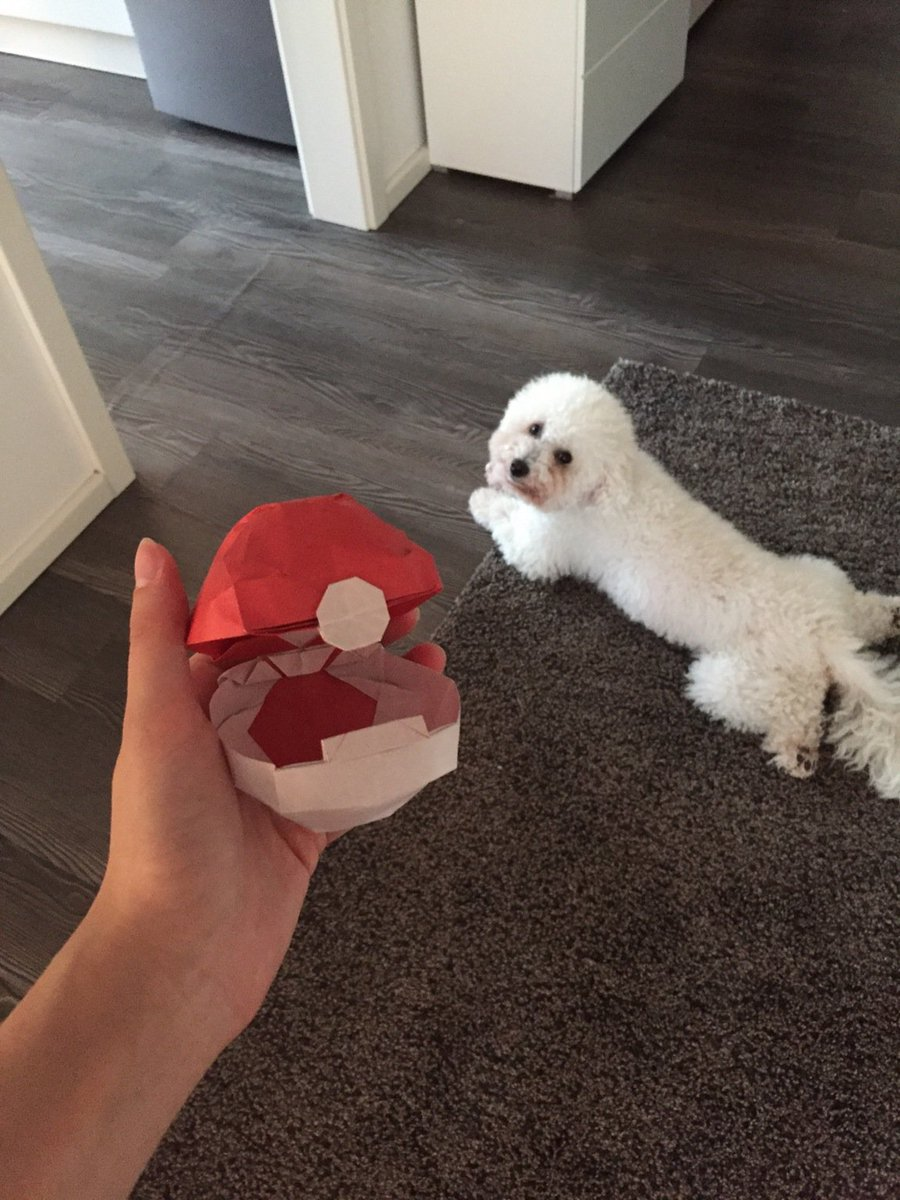 Pokmon Go News On Twitter Check Out Udittshies Origami Pokball