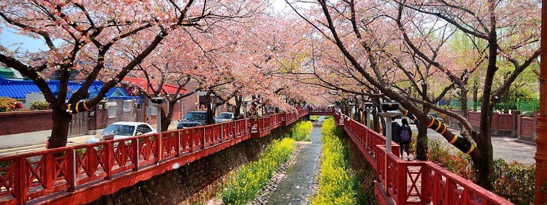 Travel to Korea